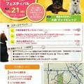 写真: 20121021 わんわんフェスティバル1