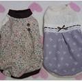 20121018 NEWお洋服(happy wan life くんくん)