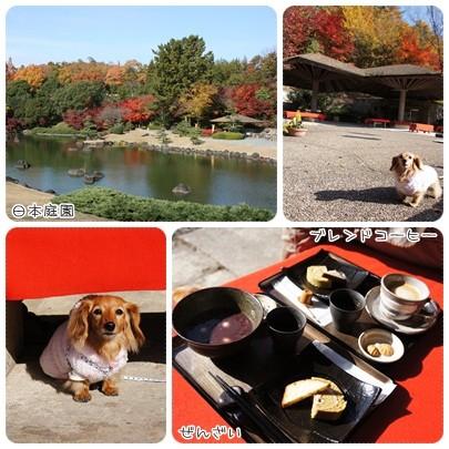 20121124 紅葉狩り5