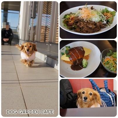 20130203 DOG GARDEN CAFE