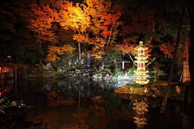 Photos: 兼六園 ライトアップ 瓢池 翠滝 海石塔