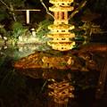 Photos: 兼六園 瓢池の海石塔 ライトアップ