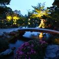 写真: 徽軫灯籠とサツキ   兼六園初夏のライトアップ