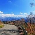 晩秋の白峰・白木峠から 白山連峰(3)
