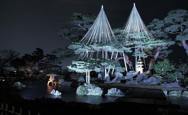 兼六園 春の特別開催 ライトアップ 七福神山と曲水(1)