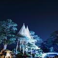 Photos: 兼六園 春の特別開催 ライトアップ 七福神山と曲水?