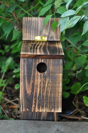 小鳥の巣箱 試作品