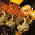 Photos: 海老、蟹、貝
