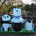 Photos: 生シロクマ君、パンダ君そしてペンギンさん♪