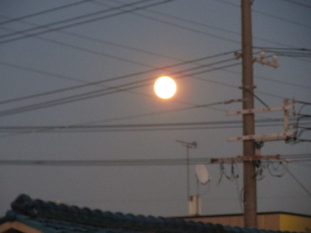 Photos: 満月。