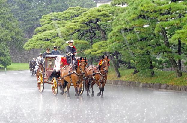 雨中の歓迎