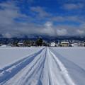 Photos: 冬晴れの朝`14(二月)-3