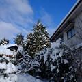 Photos: 冬晴れの朝`14(二月)-5