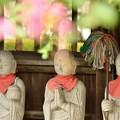 Photos: 地蔵様と百日紅