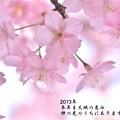 Photos: 新春