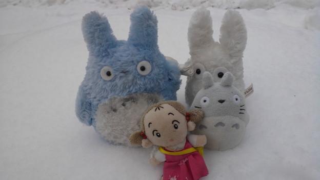 totoro〓  familyも雪に   (゚ロ゚屮)屮