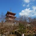 Photos: 清水寺14