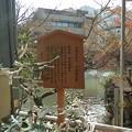 Photos: 生田神社の境内1