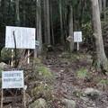 Photos: 笠形山3
