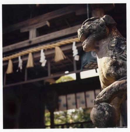 江の島 狛犬