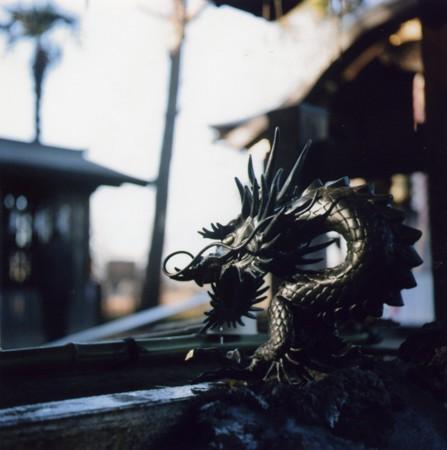 武蔵野神社 龍神
