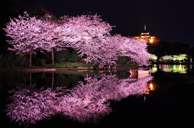 風がピタリと止んで。。池に鏡のように映る三渓園の夜桜?・・20130326