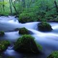 夏終わりの奥入瀬渓流 静寂な三乱の流れ・・
