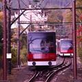 Photos: 真ん中で行き違う箱根ケーブルカー・・20131118