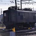Photos: 大井川鉄道 新金谷駅 牽引用電気機関車・・20131123