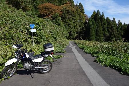 国道303号線・揖斐川町内旧道-1