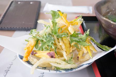 かき揚げ蕎麦(道の駅・農匠の郷やくの【京都】)・2