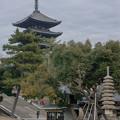 Photos: 猿沢池と興福寺