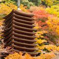 談山神社の紅葉・2013-2