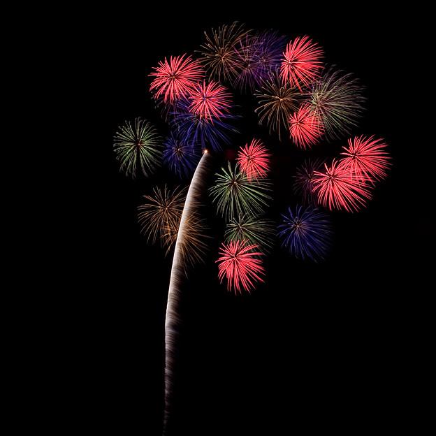 花火の祭典(1)