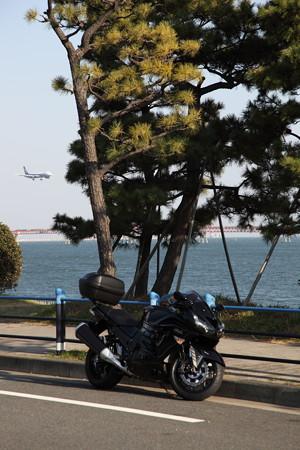 20130102-140557 京浜島にて