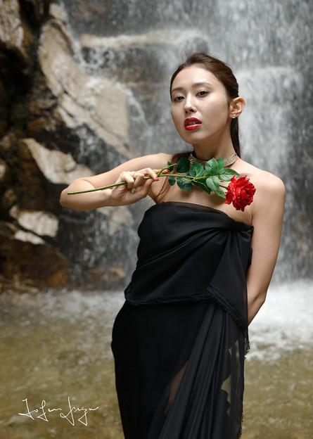 加奈恵滝つぼ薔薇2L