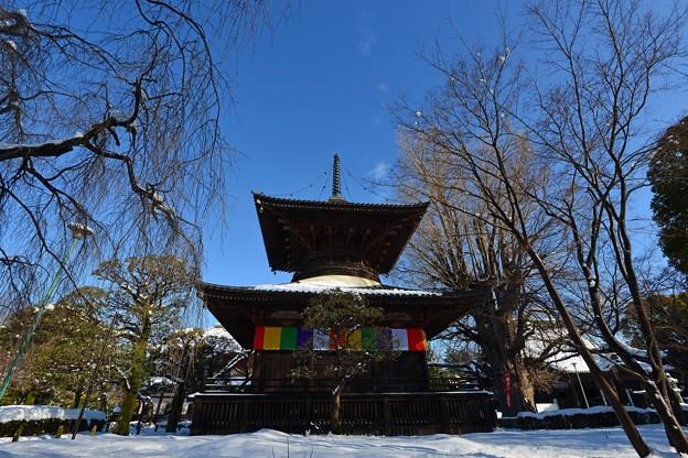 雪の多宝塔