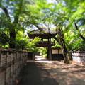 写真: 中院の門