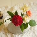 Rosespot_DSC7983