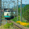 Photos: 【蔵出し】485系T14編成 いなほ10号 vol.1