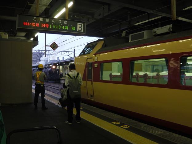 国鉄色485系いなほ&C61-20