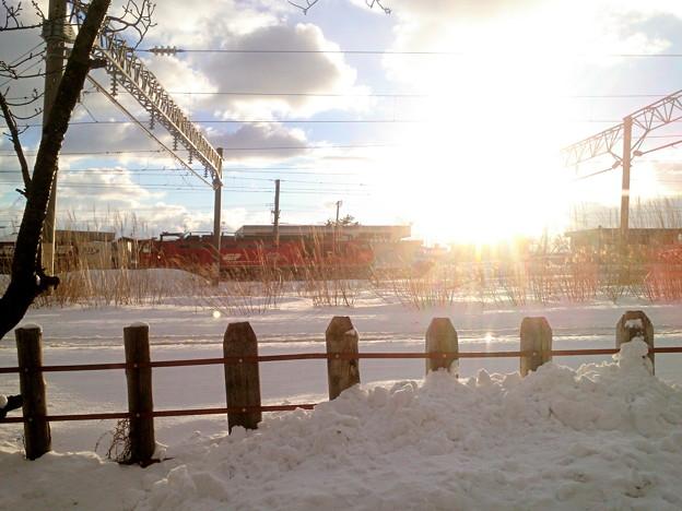 夕陽と貨物列車