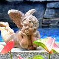 天使のウィンク