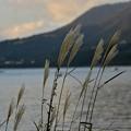 暮れゆく湖畔