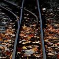 Photos: Tiny Piece of Autumn ~線路~