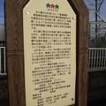 Photos: 12月16日は鷲宮神社まで行ったよ!その3