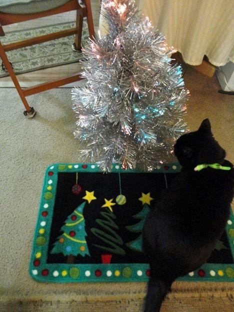 Ekkun&ChristmasMat-Dec2012-3