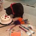 Photos: Happy 15th Birthday!-3