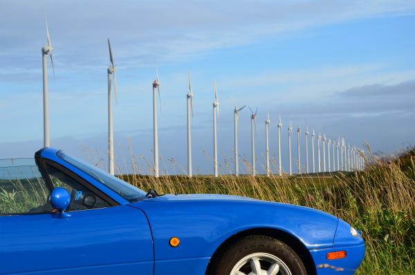 朝日を浴びるマリナーブルーと風車の列
