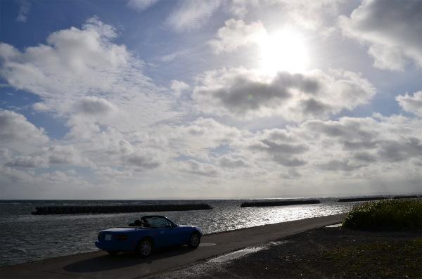 朝日に輝く海面をバックにシルエットが浮かび上がるマリナーブルー